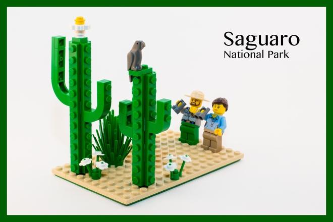Saguaro NP LEGO
