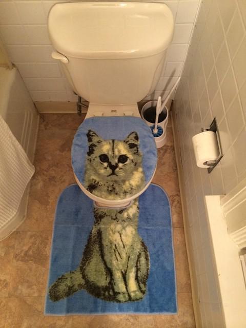 Cat Toilet Bowl thing